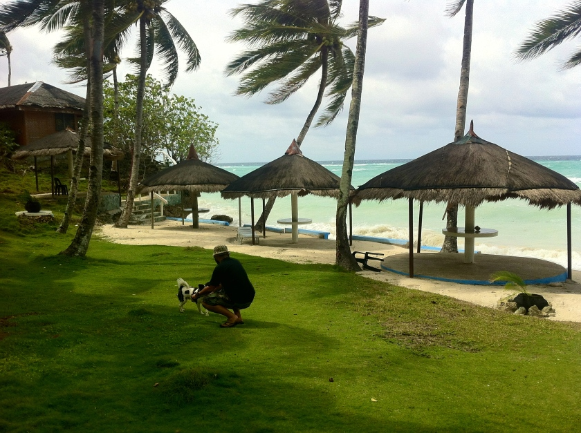 Aquino, the friendly resident dog at Flower Beach Resort, takes guests around the spacious grounds of the resort, one of the earliest resorts in Anda.